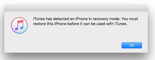 reset iphone 6 using iTunes
